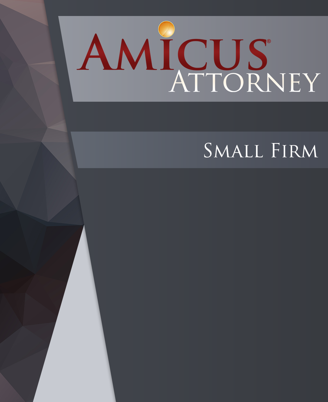 Amicus Attorney Small Firm